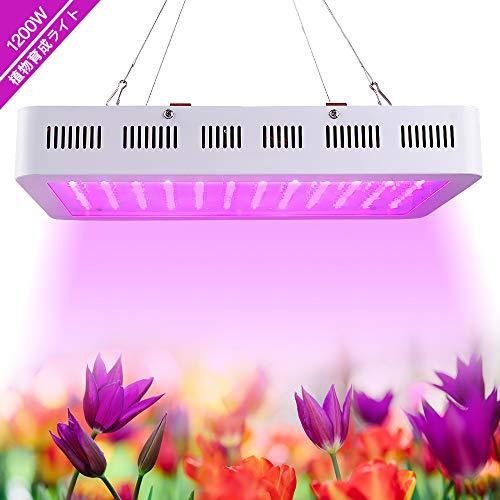 植物育成LEDライトの人気おすすめランキング22選【多肉植物にもおすすめ】