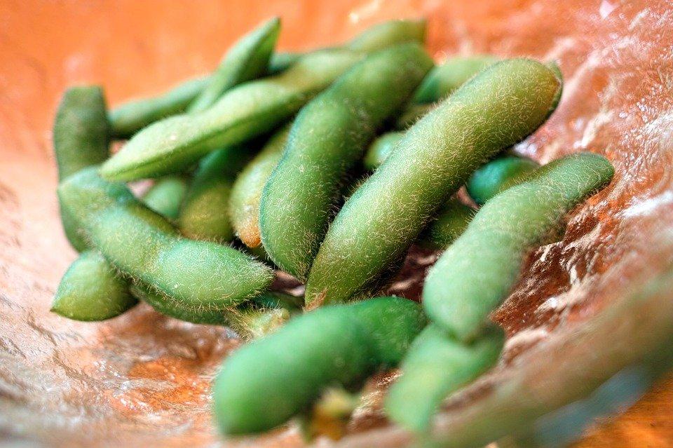 つまみの定番!冷凍食品の枝豆の人気おすすめランキング10選のサムネイル画像