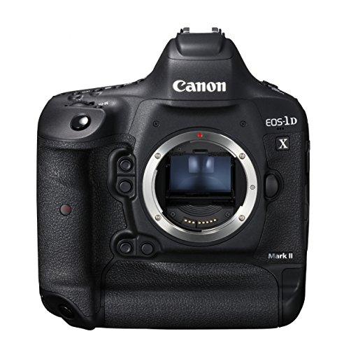 【2021年最新版】デジタル一眼レフカメラの人気おすすめランキング10選【初めての一台にも】