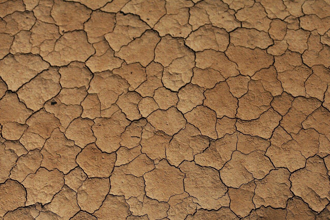 乾燥肌さん必見!オススメの対策や予防法を徹底解説のサムネイル画像