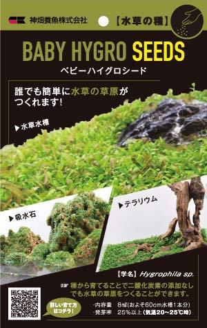 メダカの飼育にぴったりな水草の人気おすすめランキング15選【初心者でも安心!】のサムネイル画像