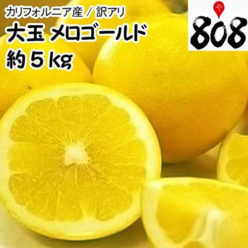 通販で買えるグレープフルーツのお取り寄せ人気おすすめランキング10選