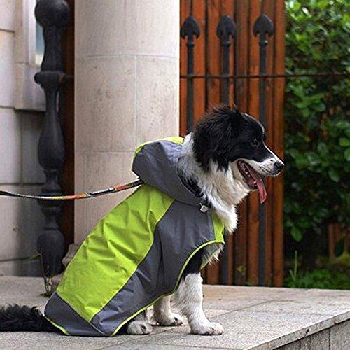 犬用レインコートの人気おすすめランキング10選【雨の日の散歩も快適に】のサムネイル画像