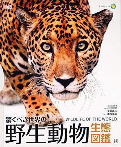 動物図鑑の人気おすすめランキング10選【大人向けも】のサムネイル画像