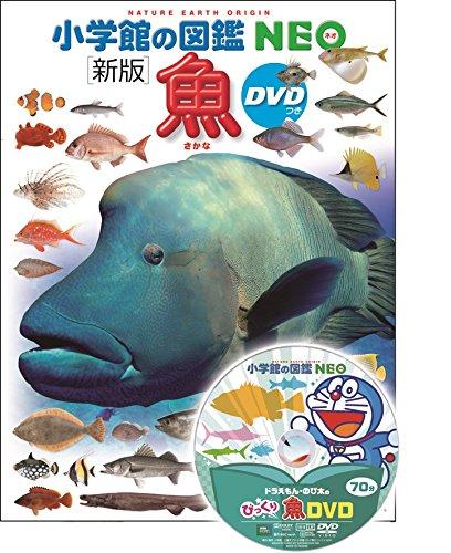 【2021年最新版】魚図鑑の人気おすすめランキング15選【幼児・子供・大人向け】