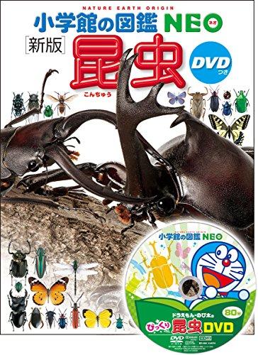 【2021年最新版】昆虫図鑑の人気おすすめランキング15選【子供から大人まで】