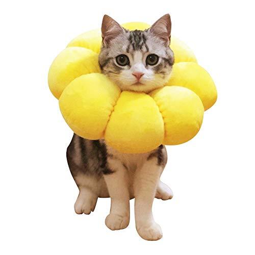 エリザベスカラーの人気おすすめランキング15選【ペットの傷口を守る】のサムネイル画像