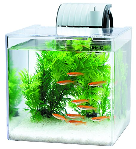 水槽の人気おすすめランキング19選【魚、メダカ用、おすすめメーカーやサイズの選び方等】