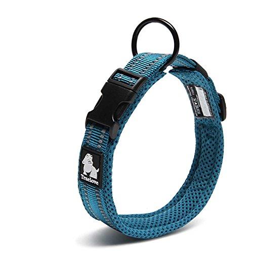 首輪の人気おすすめランキング15選【ペットのお散歩に必須】のサムネイル画像