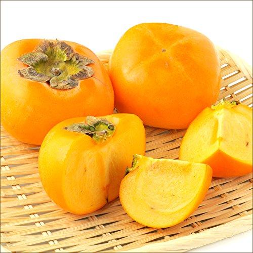 柿の人気おすすめランキング15選【美味しい!陽豊柿や次郎柿も!】