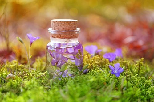 https://cdn.pixabay.com/photo/2018/01/23/20/18/purple-3102305_960_720.jpg