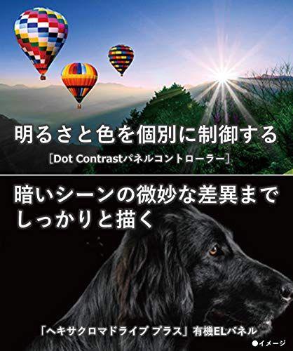 https://m.media-amazon.com/images/I/51hkk4IetmL.jpg
