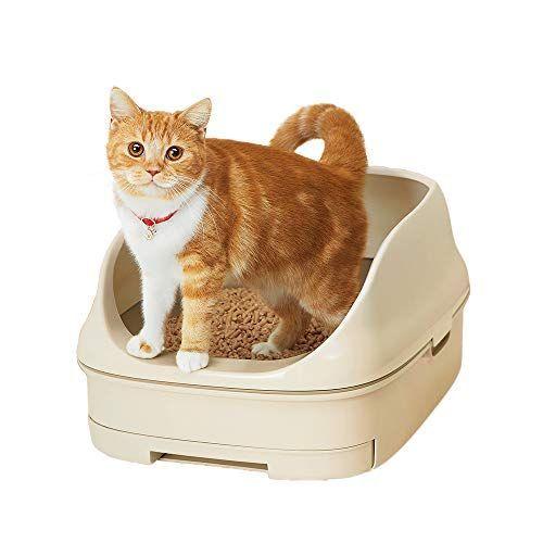 猫 砂 食べる 子猫 猫がご飯に砂をかけるしぐさ。カキカキするのは何故?いらない??