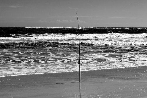 https://cdn.pixabay.com/photo/2019/02/12/16/42/fishing-pole-3992669_960_720.jpg
