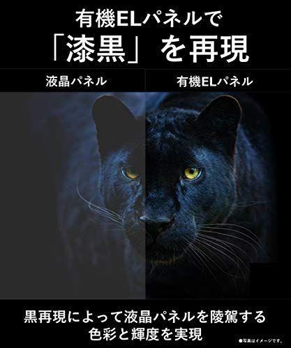 https://m.media-amazon.com/images/I/41wUOLHLkFL.jpg